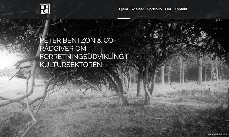 Website Peterbentzon.dk